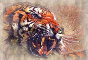 Фотообои, фреска Оскал тигра, арт. 4731