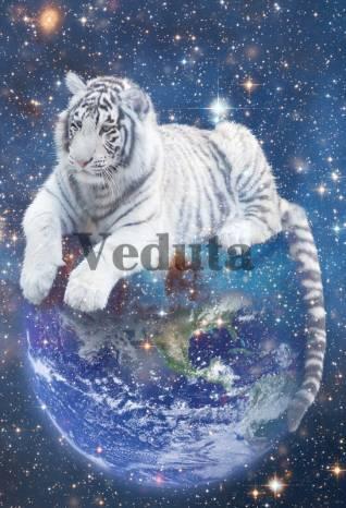 Фотообои, фреска Тигр на шаре, арт. ID10748