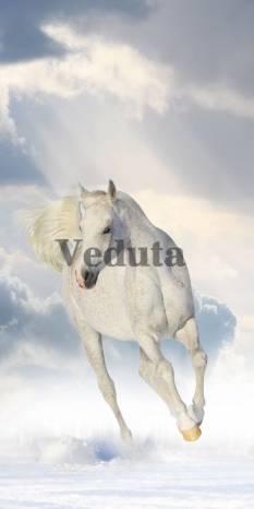 Фотообои, фреска Бегущая лошадь, арт. ID10768