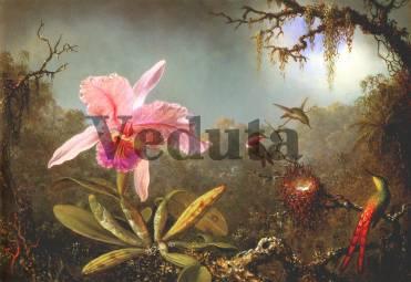 Фотообои, фреска Цветок колибри, арт. 2067