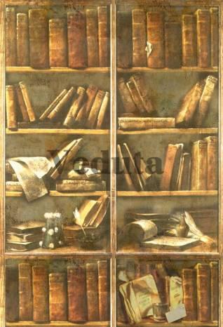 Фотообои, фреска Книги на полках, арт. 2069