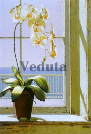 Фотообои, фреска Орхидея в горшке, арт. 2169