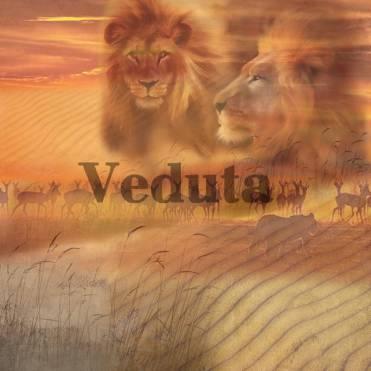 Фотообои, фреска Коллаж со львами, арт. 5112