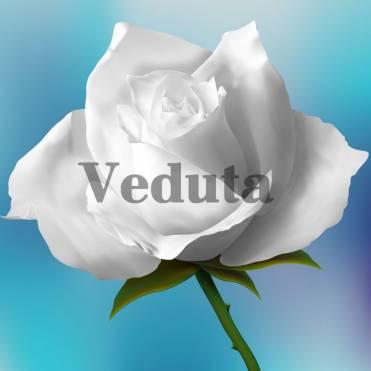 Фотообои, фреска Белые розы, арт. 7190
