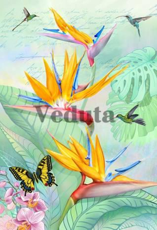 Фотообои, фреска Бабочки и колибри, арт. 7238