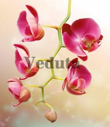 Фотообои, фреска Ветка розовых цветов, арт. 7179
