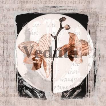 Фотообои, фреска Постер ветка орхидеи, арт. ID135672
