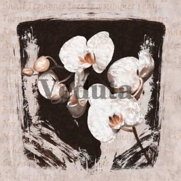 Фотообои, фреска Постер белая орхидея, арт. ID135674