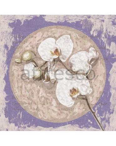 Фотообои, фреска Ветка орхидеи абстракция, арт. ID135673