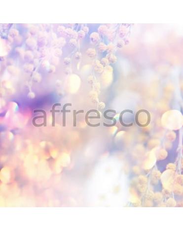 Фотообои, фреска Солнечная ветка мимозы, арт. ID11623