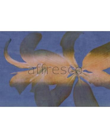 Фотообои, фреска Тень лилии, арт. ID135582