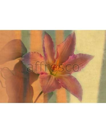 Фотообои, фреска Яркий цветок, арт. ID135583