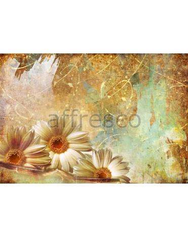 Фотообои, фреска Сюжет с герберой, арт. ID10130