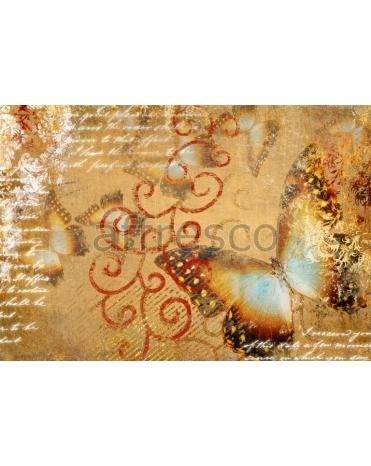 Фотообои, фреска Графика бабочки, арт. ID10129