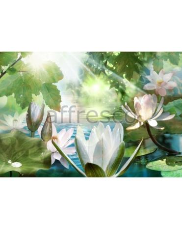 Фотообои, фреска Кувшинки на воде, арт. 7125