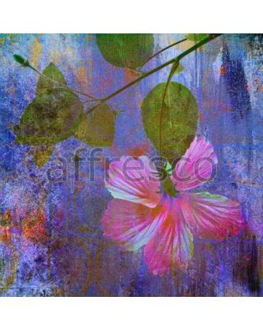 Фотообои, фреска Цветок краски, арт. ID135639
